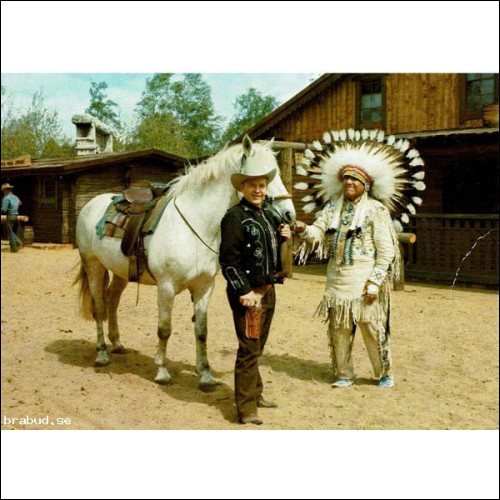 High Chaparral´s sheriff.